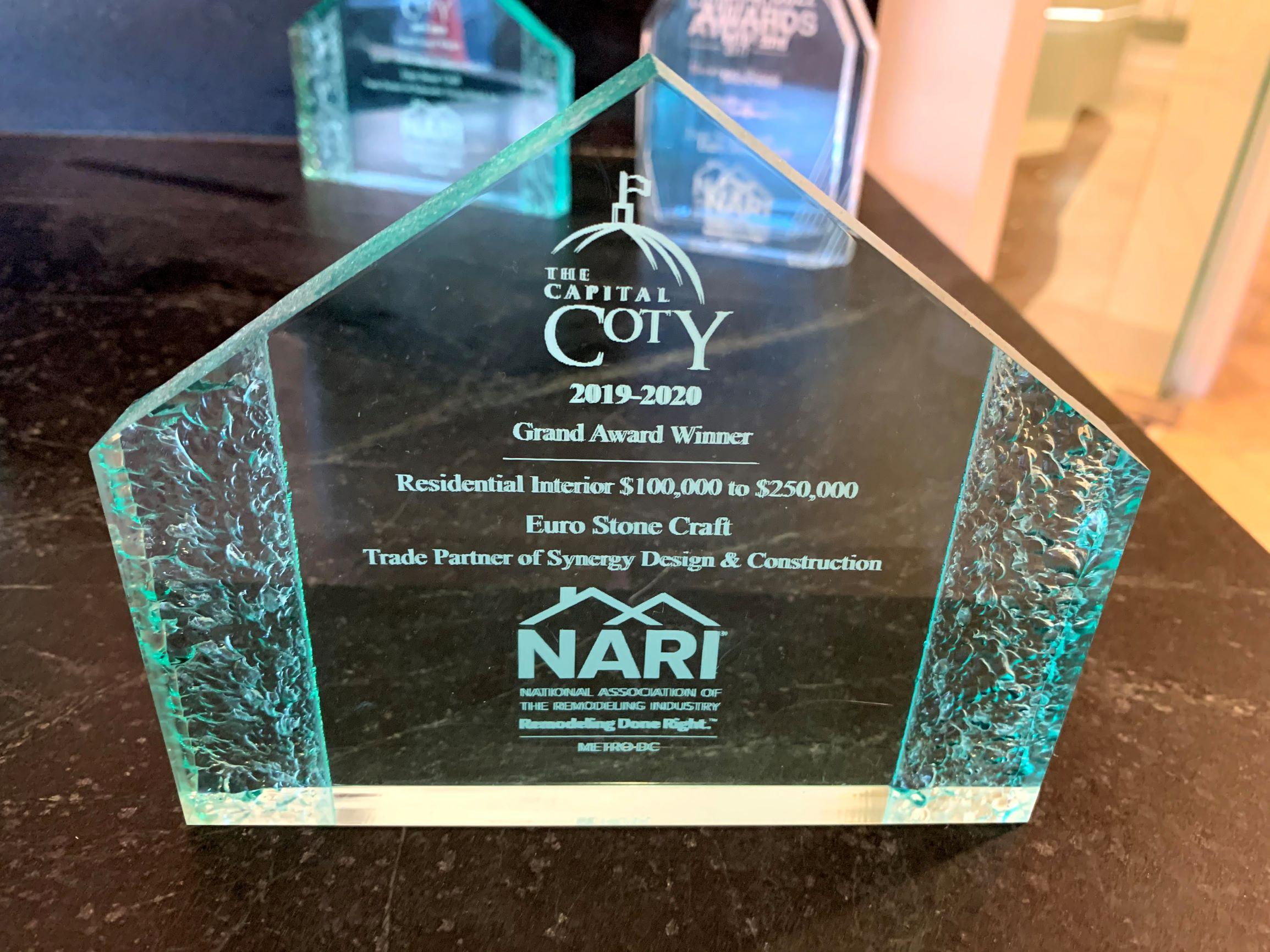 ESC Coty Award 2019-2020 Residential Interrior Synergy