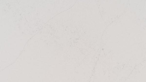 Q Premium Calacatta Botanica Quartz